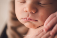 Greensboro Newborn Photographer - Jenifer Howard Studios